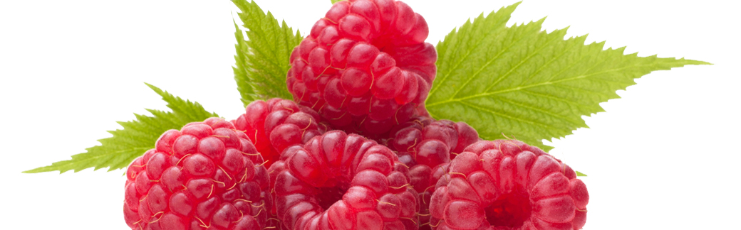 Poissonnerie reims production fruit et l gume champfleury - Fruit ou legume en y ...